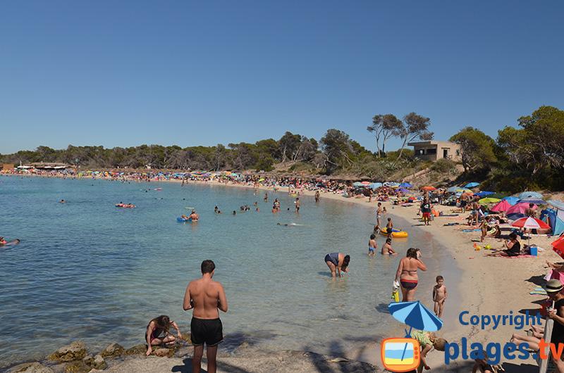 Photo de la plage d'Es Moli de s'Estany à Colonia de Sant Jordi à Majorque