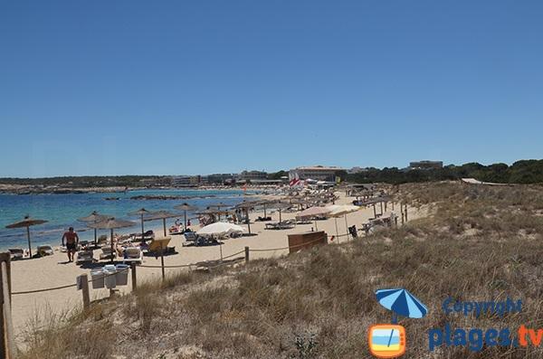 Photo de la plage d'Es Pujols à Formentera