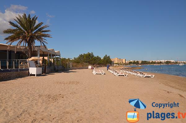 Plage Estanyol à Sant Josep de sa Talaia à Ibiza