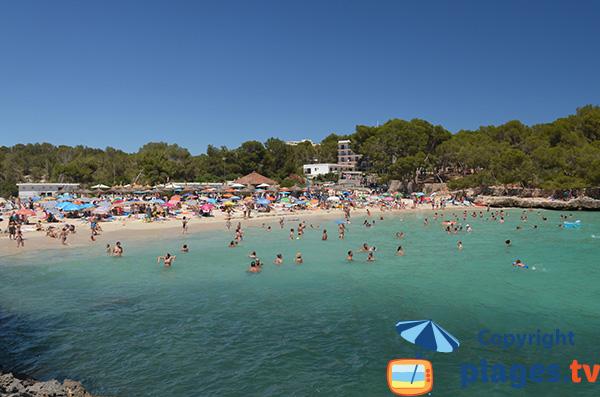 Plage de sable à côté de la plage de s'Amarador - Majorque