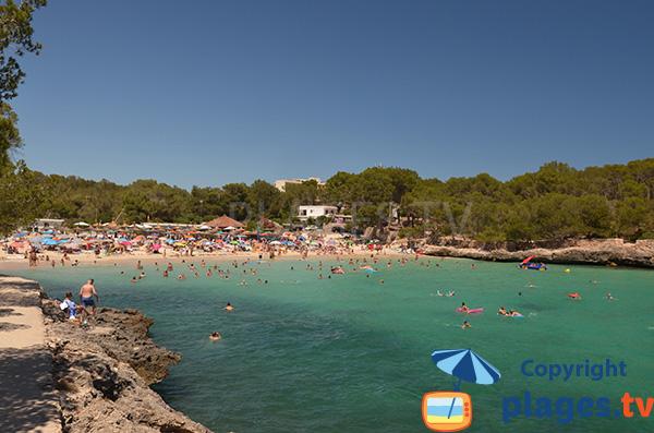 Photo de la plage de ses Fonts de n'Alis à Majorque