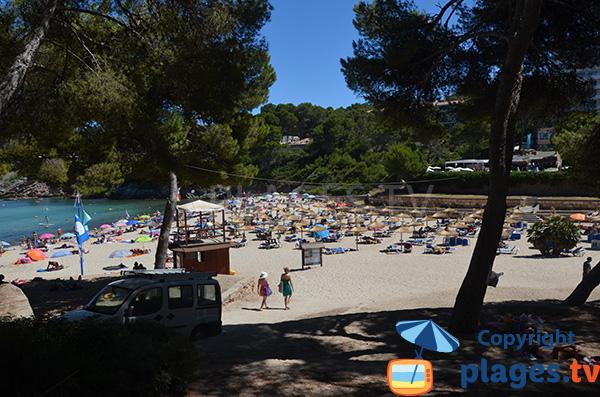 Belle plage à Font de sa Cala - Majorque