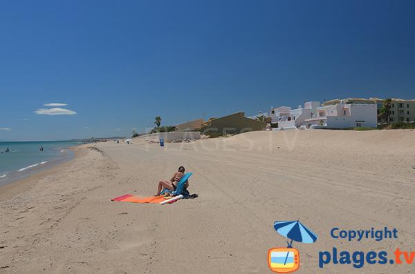 Petites maisons le long de la plage de Garrofera à El Saler