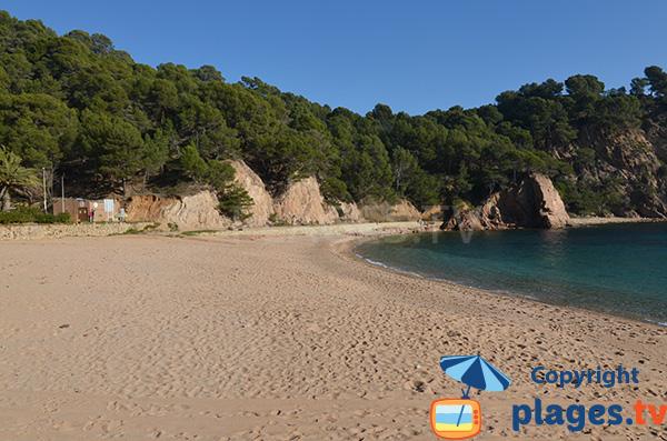 Belle crique à Tossa de Mar en Catalogne
