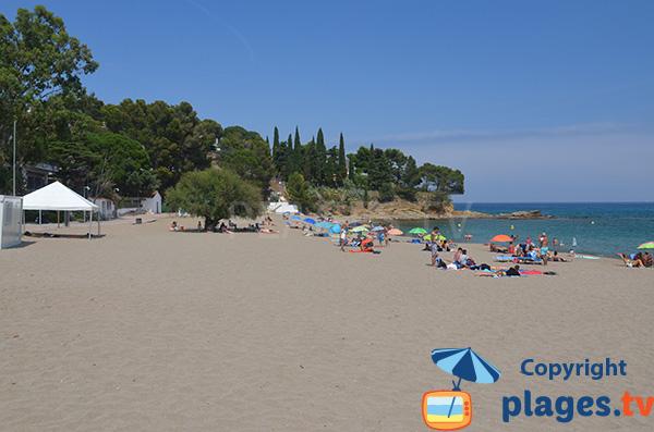 Photo de la plage de Grifeu à Llança en Espagne