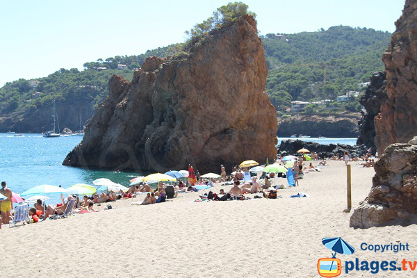 Beautiful cove in Begur - Illa Roja