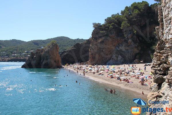 Crique d'Illa Roja à Begur en Espagne sur la Costa Brava
