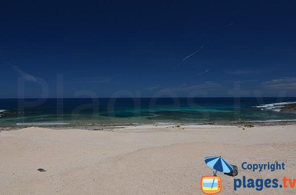 Wild beach in La Graciosa