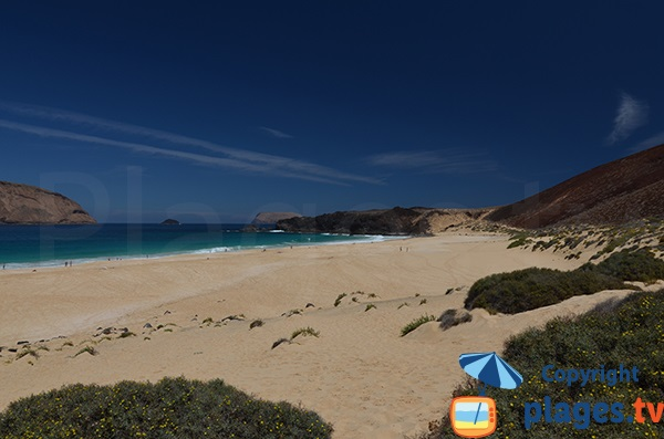 Beach of Las Conchas in La Graciosa - Lanzarote