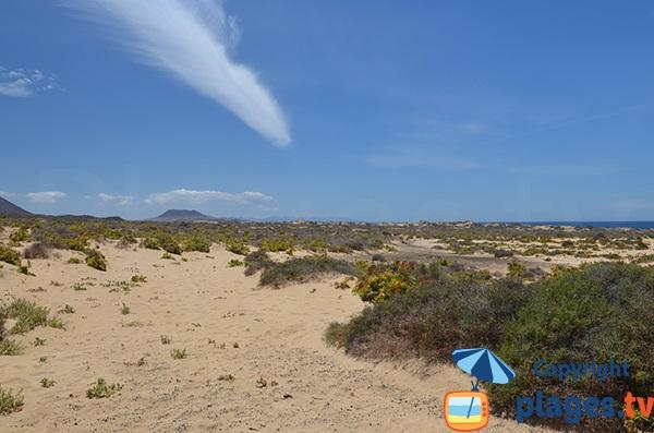 Environment of the beach of Las Conchas in La Graciosa - Lanzarote