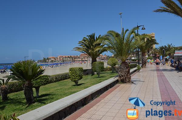 Promenade en front de mer à Los Cristianos - Tenerife