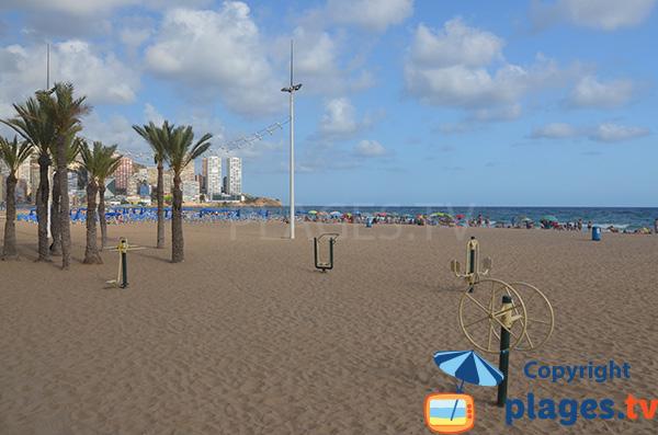 Grande plage de Benidorm - Espagne