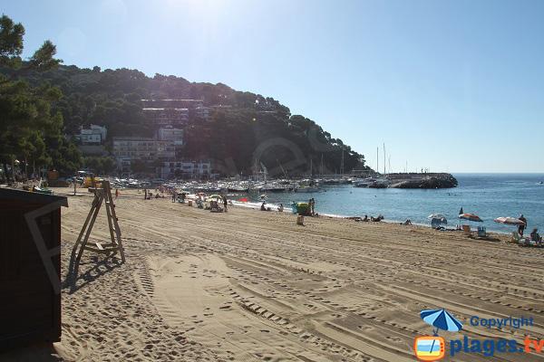 Plage de Llafranc à Palafrugell avec vue sur le port - Espagne