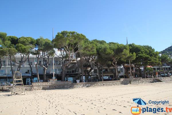 Front de mer de Llafranc - Espagne