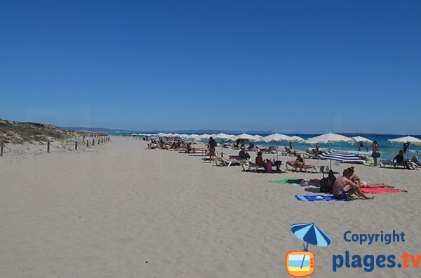 Location de matelas sur la plage du Llevant - Formentera