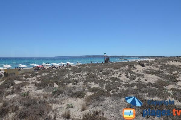 Photo de la plage du Llevant à Formentera