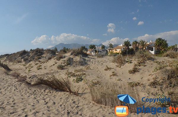 Dunes de la plage de Los Monteros - Marbella