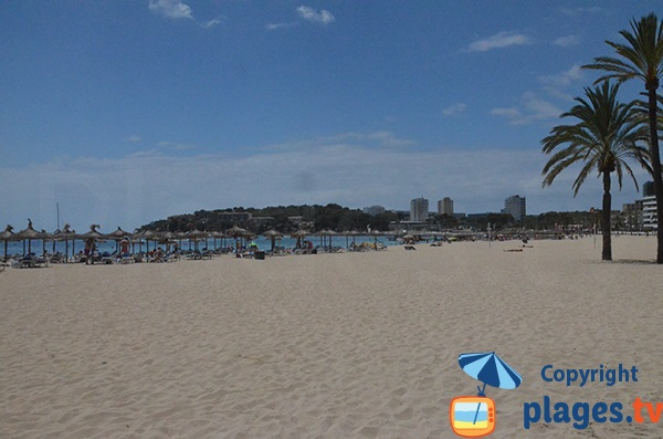 Rental of mattresses on the beach of Magaluf