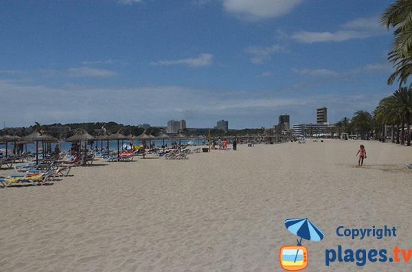 Sand beach in Magaluf - Majorca