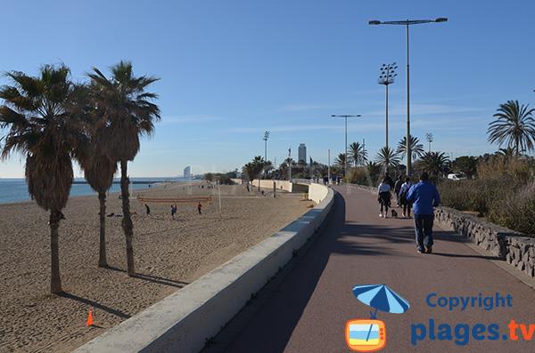 Promenade le long de la plage de Mar Bella - Barcelone