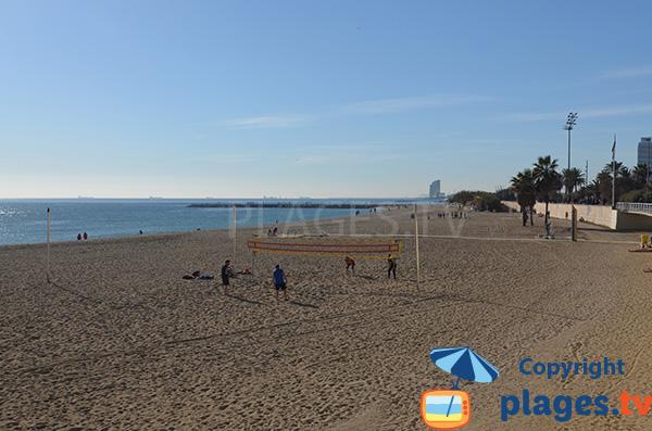 Plage de Mar Bella à Barcelone