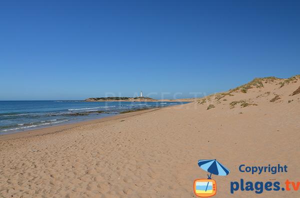 Rochers sur la plage de Marisucia à Los Canos de Meca