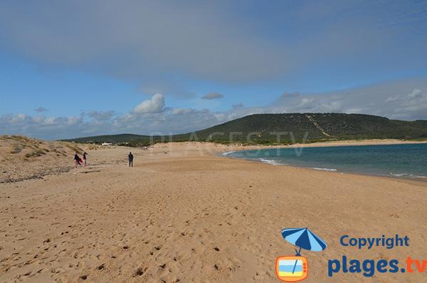 Photo de la plage du Phare à Los Canos de Meca