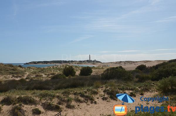 Photo de la plage de Marisucia à Los Canos de Meca - Espagne