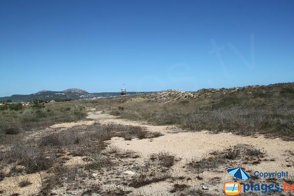 Promenade autour de la plage de Mas Pinell - Espagne