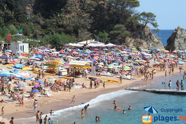 Plage de Mar Menuda à Tossa de Mar en Espagne