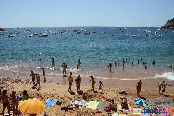 Crique de Menuda à Tossa de Mar - Espagne