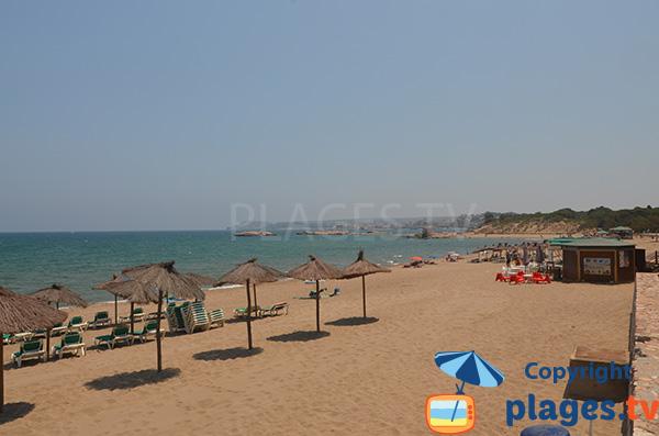 Photo de la plage de Moll Grec à Sant Martí d'Empúries - L'Escalat