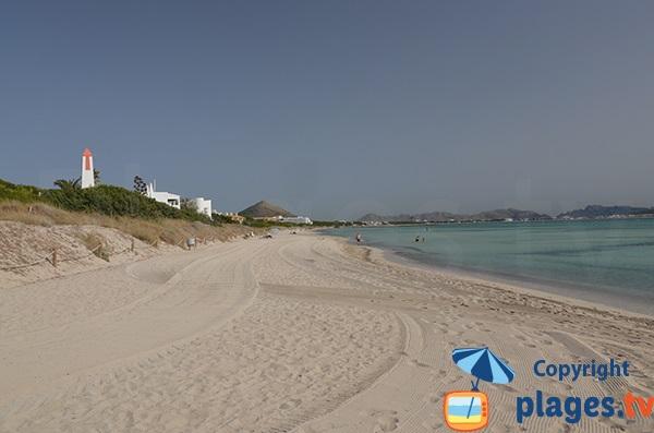 Dunes et plage de Muro à Majorque