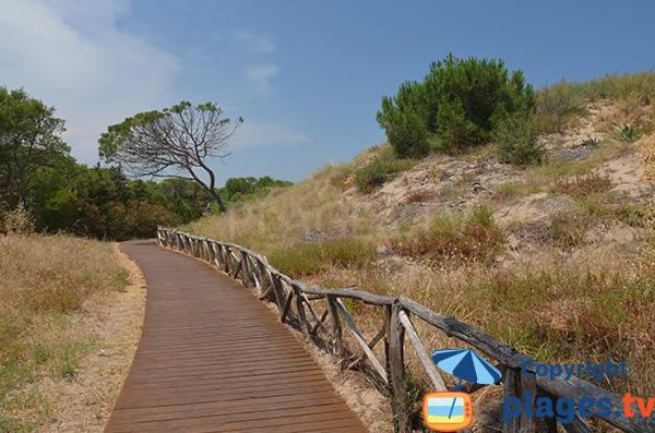 Promenade piétonne entre l'Escala et Sant Marti Empuries