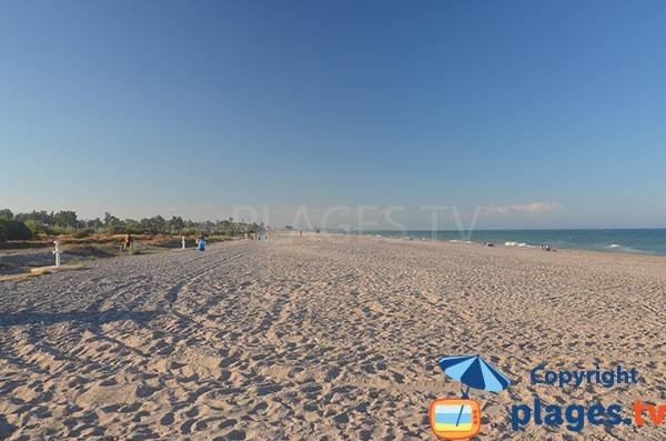 Photo de la plage naturiste de Almarda en Espagne - Sagunto