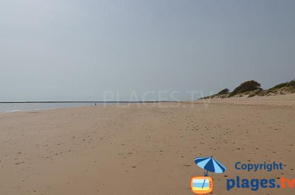 Photo de la plage naturiste de la Punta Candor à Rota en Espagne