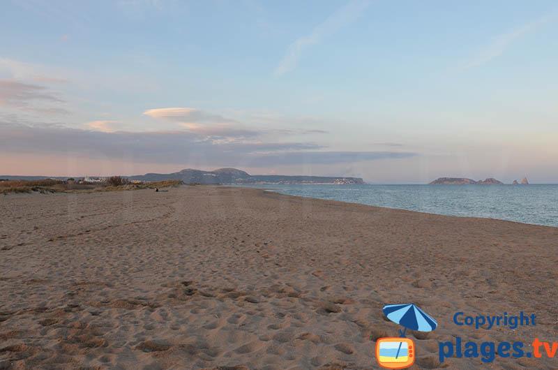 La plage nord de Pals : une plage sauvage