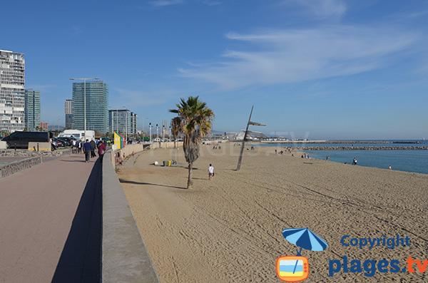 Promenade le long de la plage de Nova Mar Bella à Barcelone
