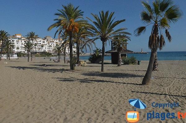 Photo de la plage Nueva Andalucia à Puerto Banus - Marbella