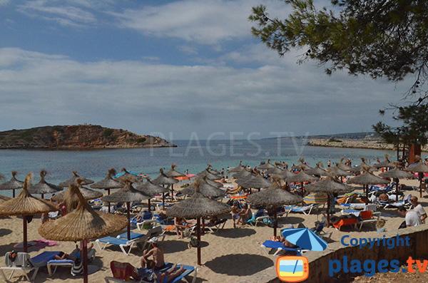 Photo de la plage Oratorio à Portals Nous - Majorque