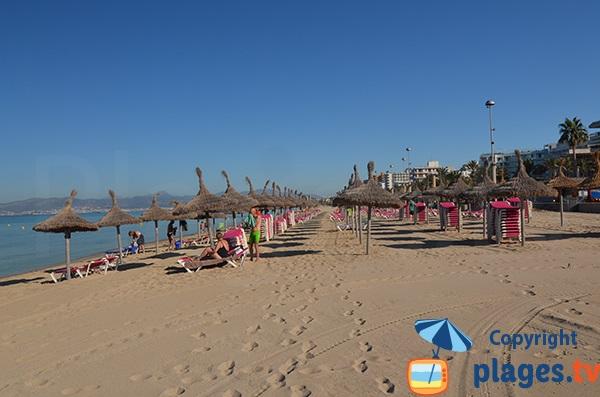 Location de matelas sur la plage de Palma