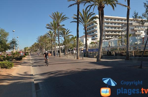 Front de mer de Palma de Majorque
