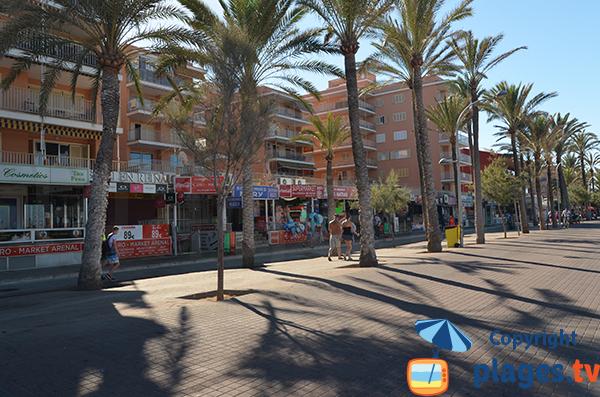 Commerces sur le front de mer de Palma de Majorque