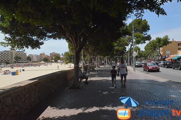 Promenade piétonne le long de la plage de Palmanova - Majorque