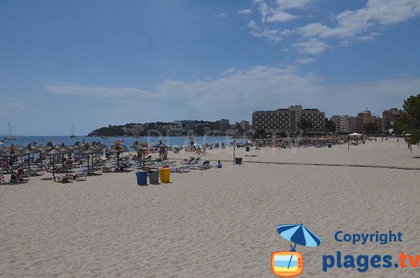 Grande plage de Palmanova - Majorque