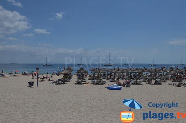 Locations de matelas sur la plage de Palmanova - Majorque