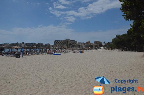 Photo de la plage de Palmanova à Majorque en Espagne