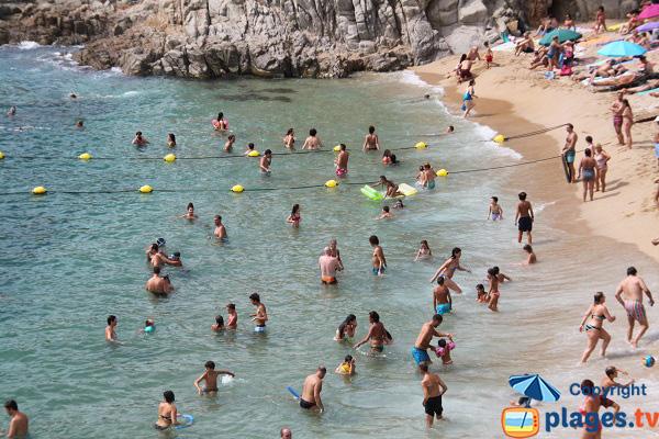 Baignade sur la plage de Pelegri à Calella de Palafrugell