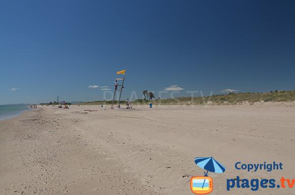 Plage et dunes dans la zone naturiste de la plage de Pinedo - Valence