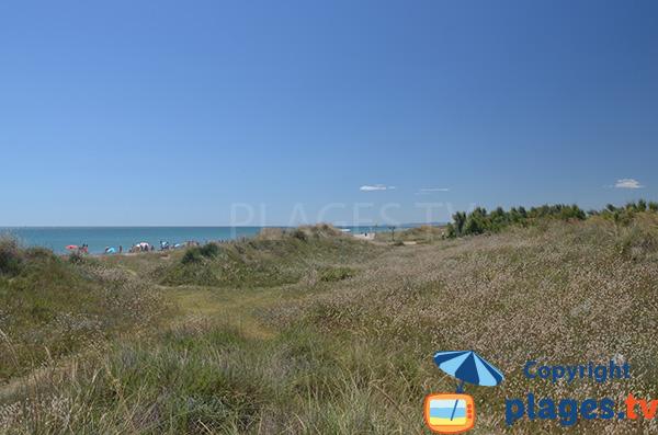 Photo des dunes de la plage de Pinedo à Valence